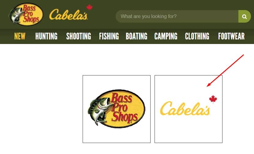 Cabela's Survey