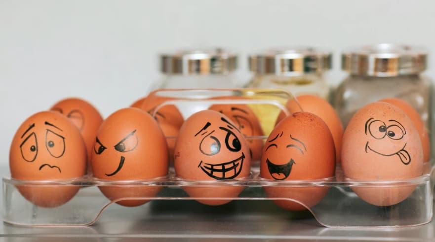 If I Had 4 Eggs